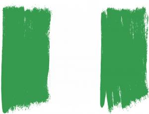 nigerias flag hand made